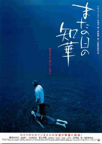 映画チラシ: またの日の、知華(裏面左上:コメント2件)