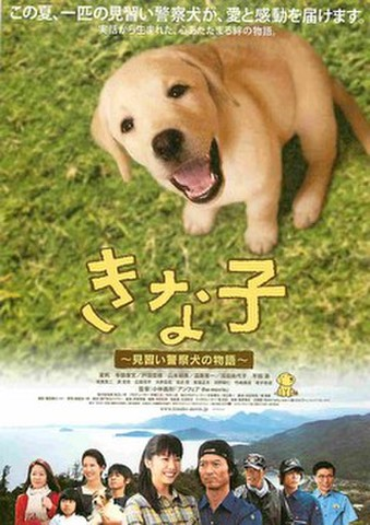 映画チラシ: きな子 見習い警察犬の物語