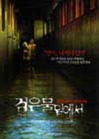 韓国チラシ317: 仄暗い水の底から