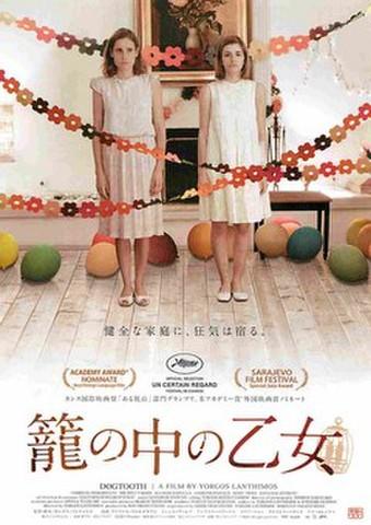 映画チラシ: 籠の中の乙女(裏面:右下写真あり)