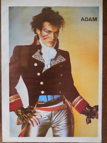 80'sADAM the ANTS ポスター