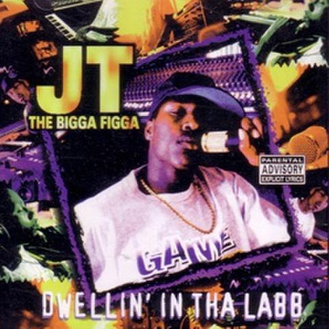 JT The Bigga Figga / Dwellin In Tha Labb