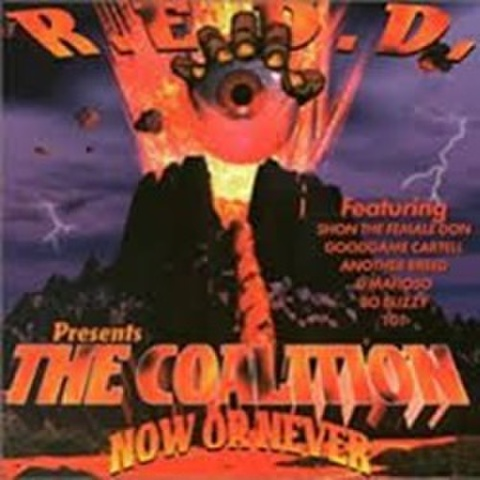 R.E.D.D. / The Coalition Now Or Never