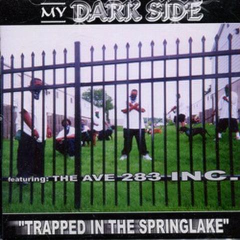 My Dark Side / Trapped In The Springlake