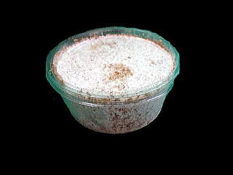 プリンカップ詰めカワラ菌糸