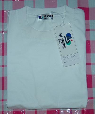 MIZUNO Tシャツ メンズサイズSサイズ