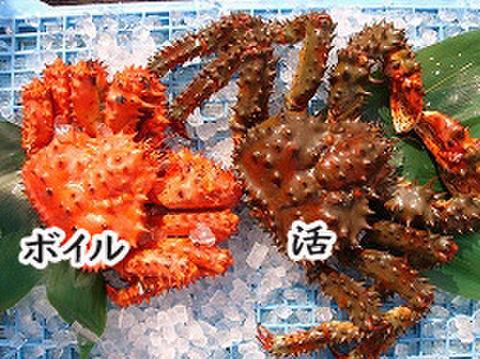 夏の蟹と言えばコレ! 活花咲ガニ1kg