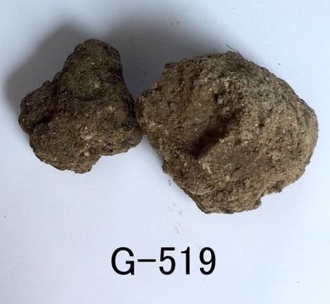 Gー519 原土10kg