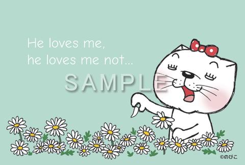 ポストカード:のび猫 花占い