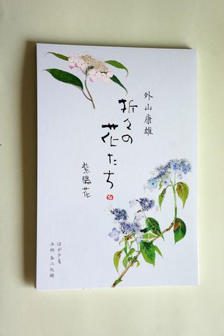 紫陽花 はがき箋