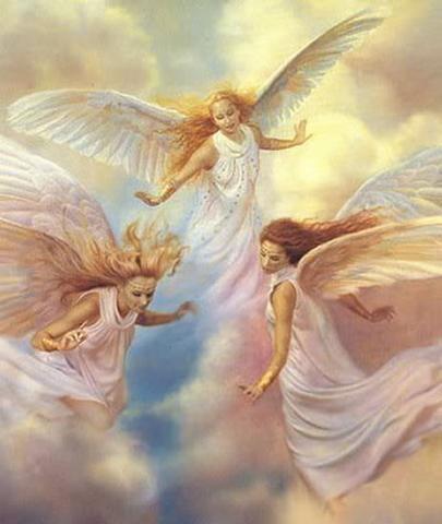 神の祝福を受けた、究極の癒しの羽