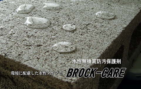 ブロックケア 500ml