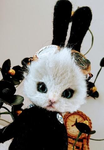羊毛フェルト人形 ウサギスーツの猫 2019 summer