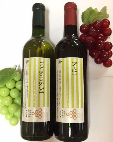 2019新作ワイン2種