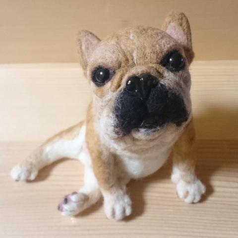 大きなうちの子オーダー(ノーマル) ※はなぺちゃ犬