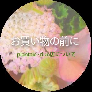 plantale・duo店について