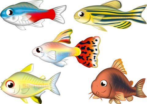 入門熱帯魚 5種セット ベクター Adobe Ai形式