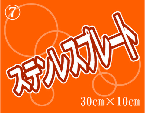 ⑦ステンレスプレート 300mm×100mm