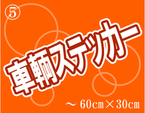 ⑤車輌用ステッカー ~600mm×300mm