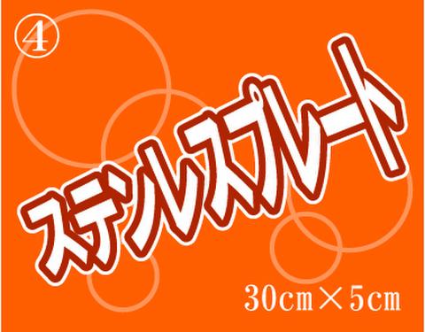 ④ステンレスプレート 300mm×50mm