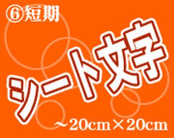 ⑥シート文字短期 200mm角~1文字