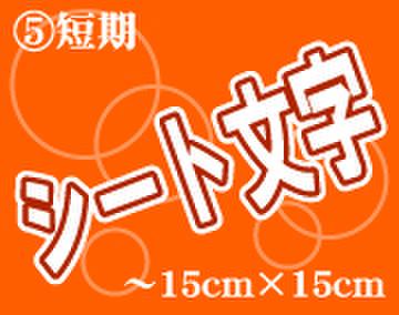 ⑤シート文字短期 150mm角~1文字