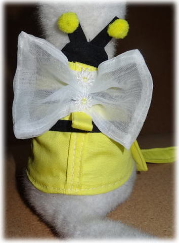 フェレットミツバチ