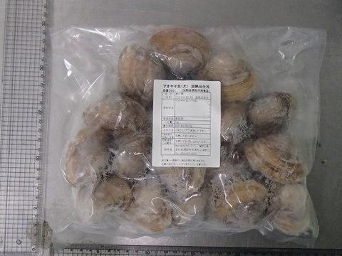 (395)アオヤギ貝(大) 超絶品生冷