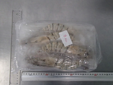 (1109)有頭ブラックタイガー海老 9尾