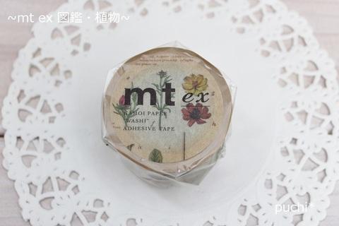 mt ex 図鑑・植物