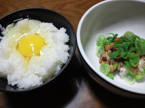 庭鶏の卵10個