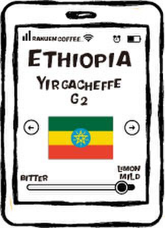 エチオピア イルガチャフ G2 200g