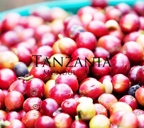 タンザニア モンデューロ 200g