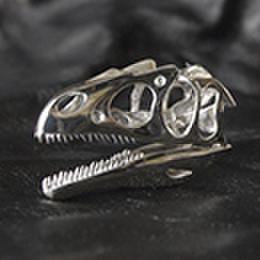 アロサウルス 亜成体