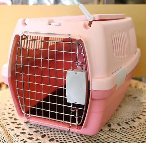 2ドアプラキャリー ピンク