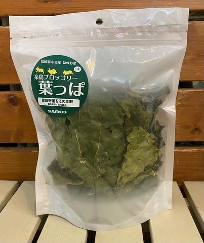 糸島ブロッコリー葉っぱ