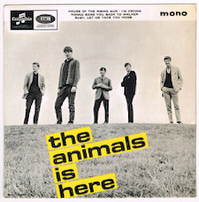 ANIMALS / THE ANIMALS IS HERE