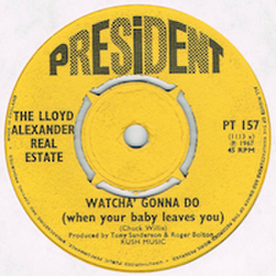 LLOYD ALEXANDER REAL ESTATE / GONNA LIIVE AGAIN