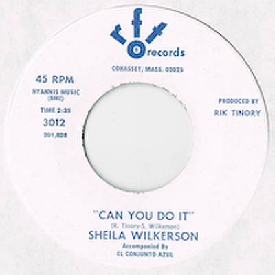 SHEILA WILKERSON / CAN YOU DO IT
