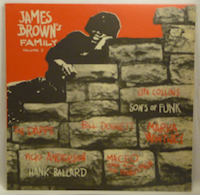 V.A. / JAMES BROWN'S FAMILY VOL.1