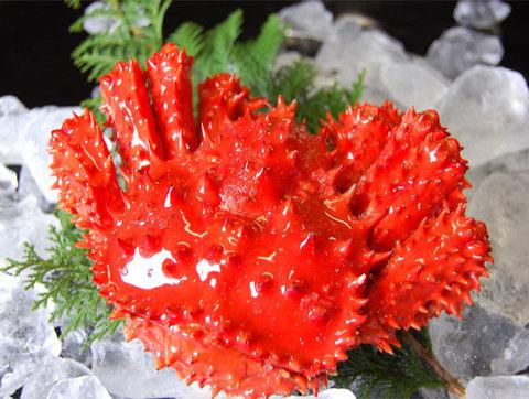 急速冷凍 花咲かに  1尾(700g~800g前後)