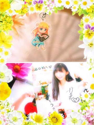 夏の思い出☆セット(送料無料)