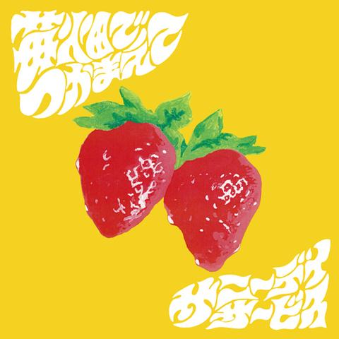 サニーデイ・サービス / 『苺畑でつかまえて』 (ROSE 195/ANALOG 7INCH+CD)