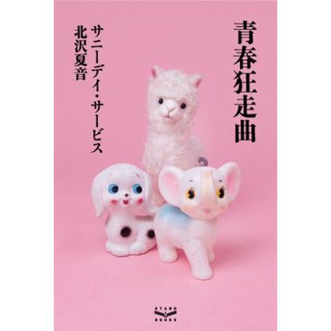 サニーデイ・サービス 北沢夏音 /『青春狂走曲』(単行本)