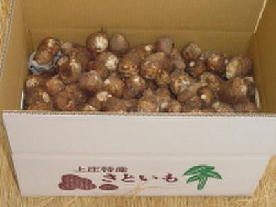 [00302] 上庄の里芋【10kg】土付き【11月よりご予約順に発送】