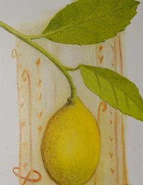 エッセンシャルオイル・レモン15ml(オーガニック)