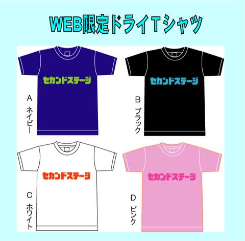2018 オリジナルWEB限定ドライTシャツ XXXL