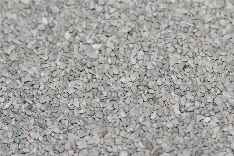 セピオライト(15-30メッシュ) 1kg