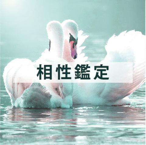 相性鑑定(メール鑑定)