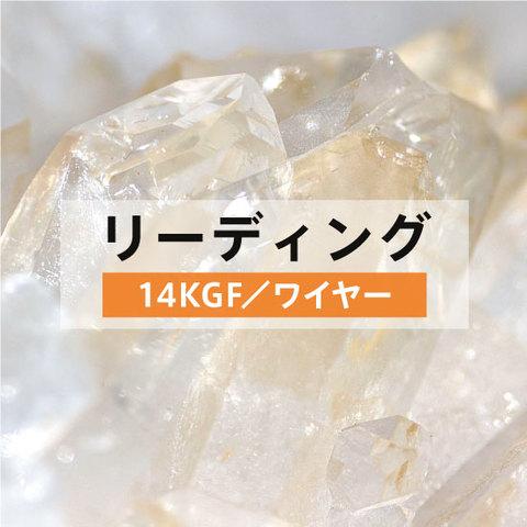 リーディング☆14KGFアクセサリー☆お申し込み☆